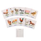 Обучающие карточки English «Животные фермы»