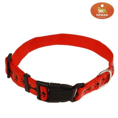 Ошейник двуслойный со светоотражающим покрытием и косточками, 55 х 2,5 см, красный