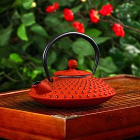 Чайник с ситом 500 мл 'Марокко', цвет красный, с эмалированным покрытием внутри Ош