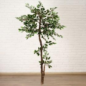 Дерево искусственное лист с белым 160 см Ош