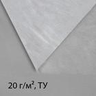 Материал укрывной, 5 × 1,6 м, плотность 20, с УФ-стабилизатором, белый, Greengo, Эконом