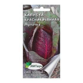 """Семена Капуста краснокочанная """"Мулатка"""", 0,3 г"""
