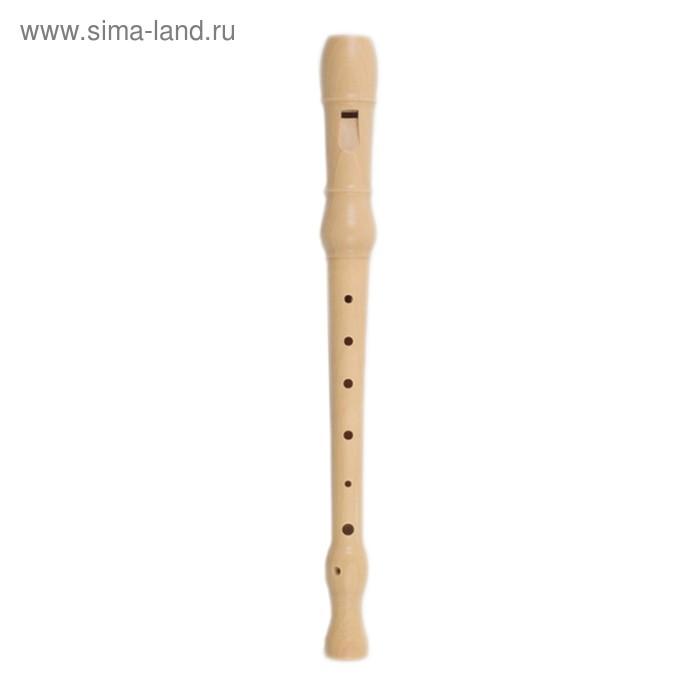 Блокфлейта Meinel M210-1 сопрано, немецкая система, клен