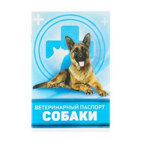 Ветеринарный паспорт 'Для собаки' Ош