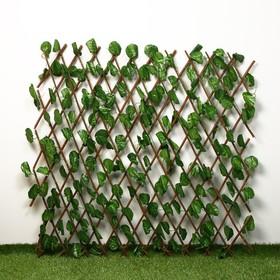 Ограждение декоративное, 200 × 75 см, «Лист ольхи», Greengo Ош