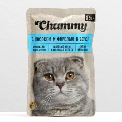 Влажный корм Chammy для кошек, лосось/форель в соусе, пауч, 85 г - Фото 1