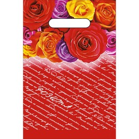 Пакет 'Розита', полиэтиленовый с вырубной ручкой, 20 х 30 см, 30 мкм Ош