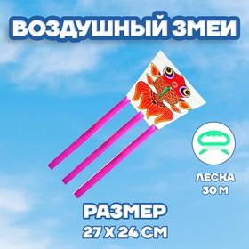 Воздушный змей «Рыбка», с леской Ош