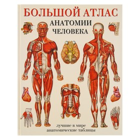 «Большой атлас анатомии человека», Махиянова Е. Б. Ош