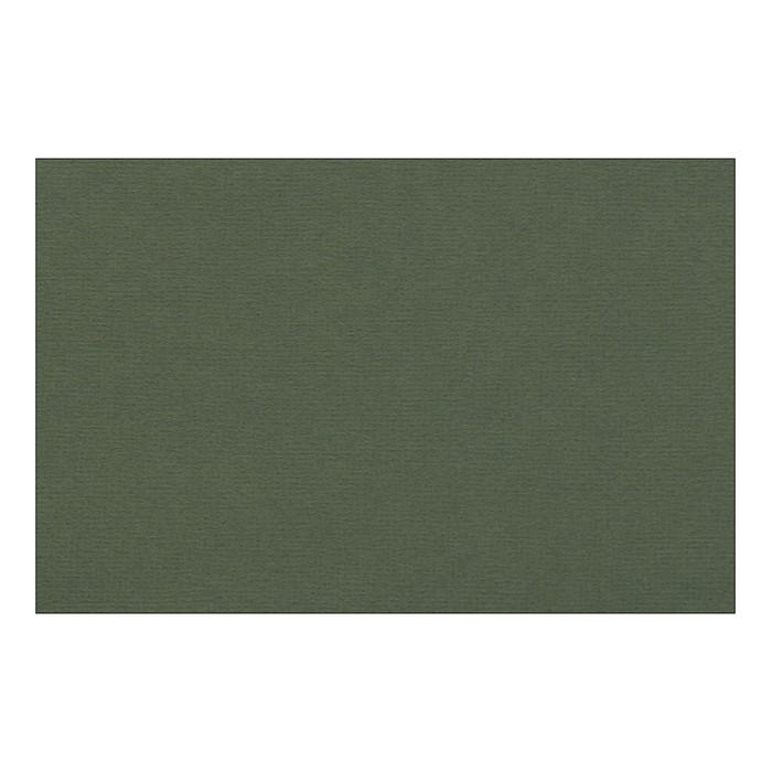 Бумага для пастели 210 х 297 мм, Lana Colours, 1 лист, 160 г/м?, виридоновый зелёный