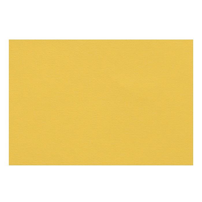 Бумага для пастели 210 х 297 мм, Lana Colours, 1 лист, 160 г/м?, светло-жёлтый