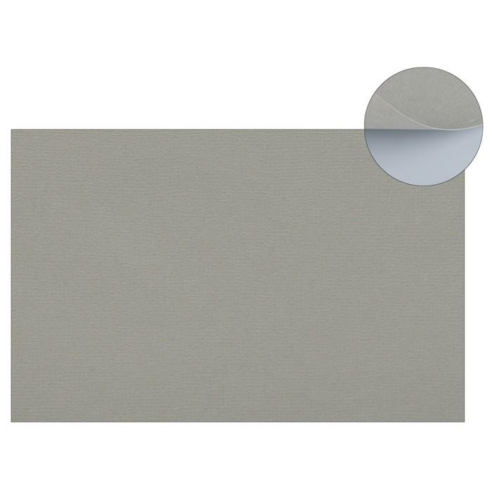 Бумага для пастели 210 х 297 мм, Lana, Colours, 1 лист, 160 г/м?, холодный серый
