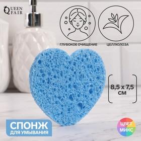 Спонж для умывания «Сердце», 8,5 × 7,5 см, цвет МИКС Ош