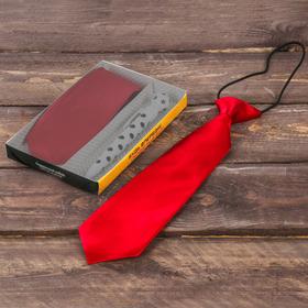Подарочный набор: детский галстук и ручка-мяч 'Будь впереди! Побеждай!' Ош