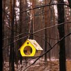 Кормушка для птиц «Бочка», 20 × 19 × 17 см, Greengo - Фото 10