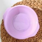 Тарелка «Пикник», 700 мл, цвет МИКС - Фото 2