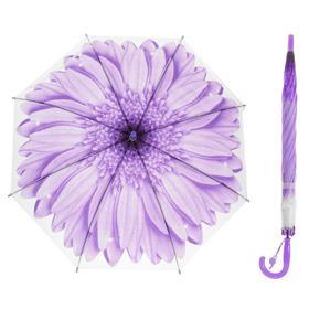 Зонт-трость «Гербера», полуавтоматический, со свистком, R=41см, цвет фиолетовый Ош