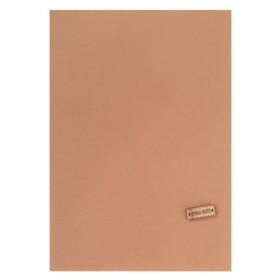 Ткань на клеевой основе «Бежевый», 21 х 30 см Ош