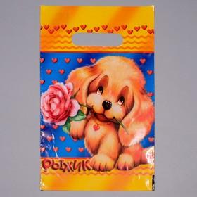 Пакет 'Рыжик', полиэтиленовый с вырубной ручкой, 20 х 30 см, 30 мкм Ош