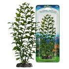 Растение PENN-PLAX BLOOMING LUDWIGIA, 18см, с грузом, зеленое