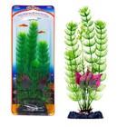 Растение-композиция PENN-PLAX FLOWERING CABOMBA-MALAY CRIP, 20см