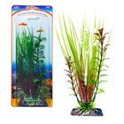 Растение-композиция PENN-PLAX HAIRGRASS-BLOOMING LUDWIGIA, 17см