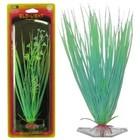 Растение PENN-PLAX HAIRGRASS, 18см, сине-зеленое, светящееся