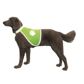 Жилет Nobby для собак, светоотражающий, 22-32/34-40см, желтый Ош