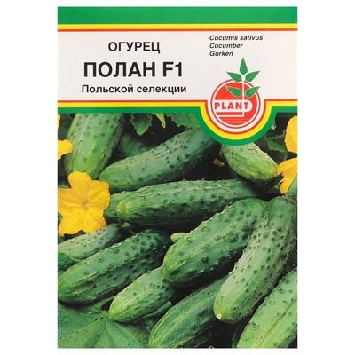 """Семена Огурец """"Полан"""", F1, пчёлоопыляемый, 15 шт - Фото 1"""