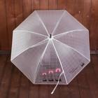Зонт детский «Ты лучший», полуавтоматический, r=45см, цвет чёрный