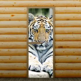 Дверь для бани и сауны 'Тигр', 190 х 70 см, с фотопечатью 6 мм Добропаровъ Ош