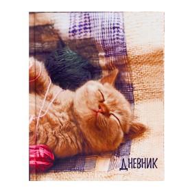 Дневник для 1-4 классов 'Котёнок', твёрдая обложка, глянцевая ламинация, 48 листов Ош