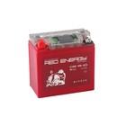 Аккумуляторная батарея Red Energy DS 12-10(YB9A-A, YB9-B, 12N9-4B-1)12V, 10Ач прямая(+ -)