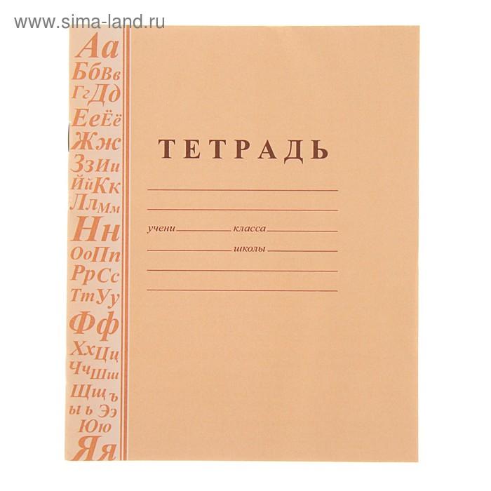 Тетрадь 12 листов в линейку, с грамматикой, обложка офсет плотность 120, блок офсет пл. 65