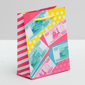 Пакет ламинированный вертикальный «Много денег!», S 11 × 14 × 5,5 см Ош