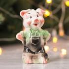 """Сувенир """"Свинка Мастер"""", 11 см микс"""