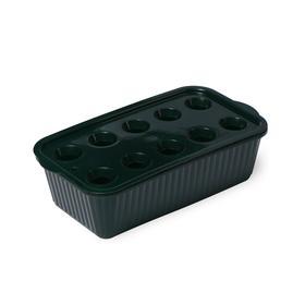 Лоток для выращивания зелёного лука, 29 × 16 × 8,5 см, тёмно-зелёный Ош