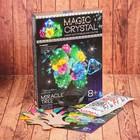"""Набор для проведения опытов """"Нерукотворное искусство"""" серия Мagic Crystal OMC-01-04"""