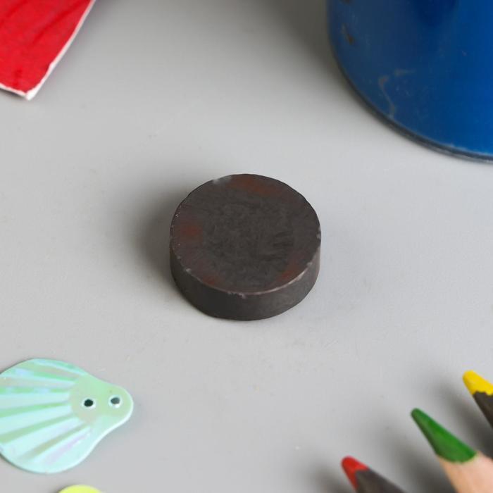 Магнит технический магнитит на обе стороны 15х5 мм
