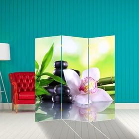 Ширма 'Орхидея с бамбуком', 160 × 150 см Ош