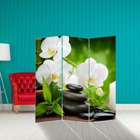 Ширма 'Белая орхидея', 160 × 150 см Ош