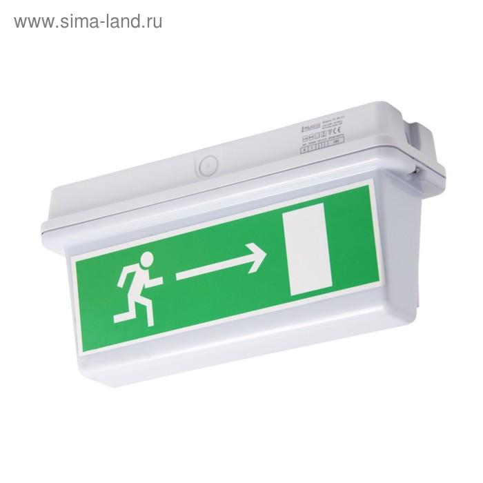 Указатель эвакуационный Pelastus, 3Вт, батарея 3.6В, 1.5А/ч, время работы 180мин, PL EM 3.0   346485