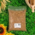Семена Пшеница, 1 кг