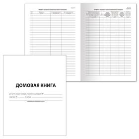 Книга домовая № 11, А4, 12 листов BRAUBERG, картонная обложка, блок офсет