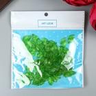 "Декор для творчества пластик ""Зелёный листик"" набор  80 шт 1,4х0,8 см - Фото 3"