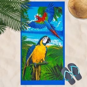 Вафельное полотенце Попугай 80х150 см, разноцветный, хлопок 100 %, 160г/м² Ош