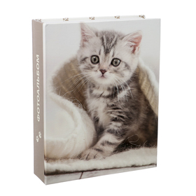Фотоальбом на 200 фото 10х15 см Pioneer Puppies and kittens