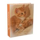 Фотоальбом на 200 фото 10х15 см Pioneer Puppies and kittens 1