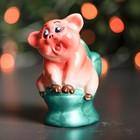"""Сувенир """"Свин на унитазе"""", 11 см, микс"""