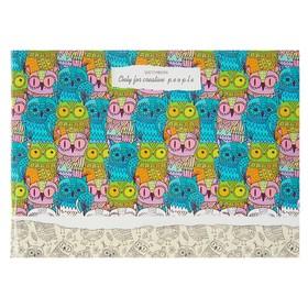 Скетчбук А5, 40 листов на скрепке «Цветные совы», обложка мелованный картон, глянцевая ламинация Ош